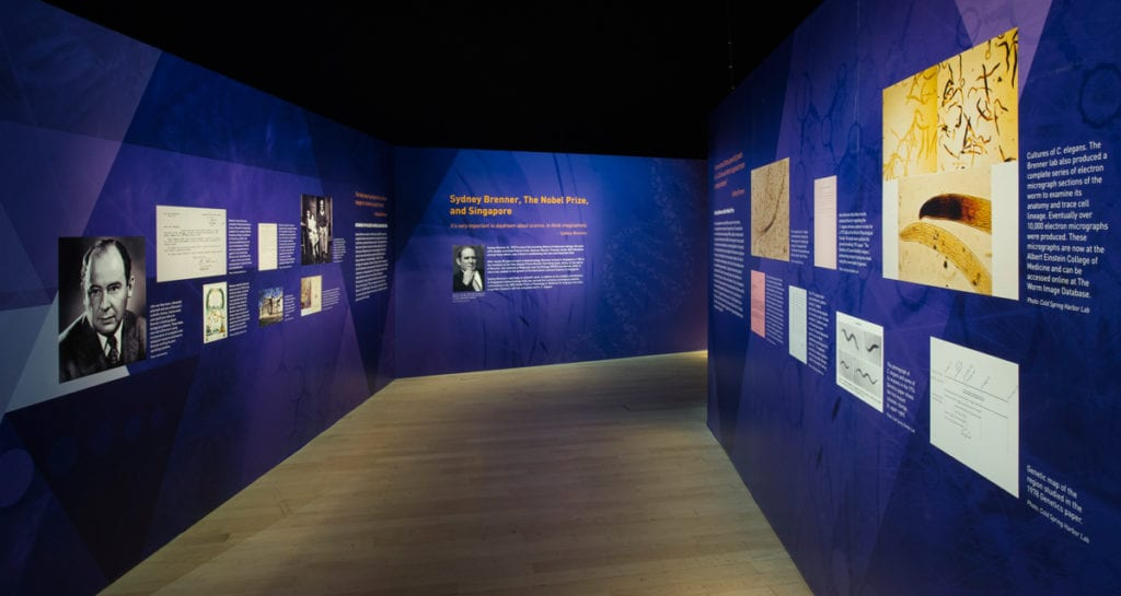 The-Nobel-Prize-Ideas-Changing-the-World_Sydney-Brenner-Showcase