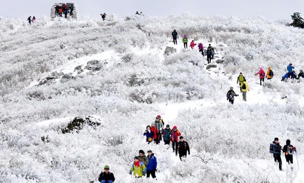2016 Taebaek Snow Festival (3)