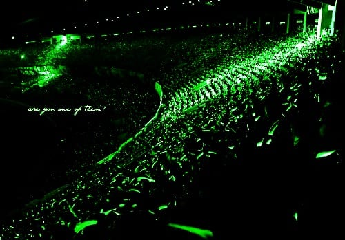 Fandom: Triple S, Colour: Green, Group: SS501 (Image Credits: http://501superstar.tumblr.com/post/27756614416/triple-swe-are-the-green-wave)