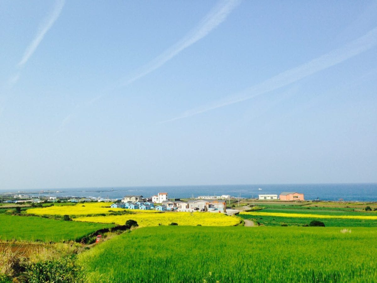 [Wanderlust Wednesday] Where and Why You Must Visit Jeju Island This May!