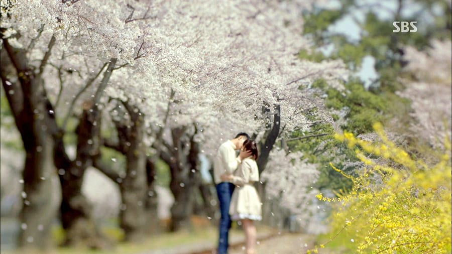 [Wanderlust Wednesday] Kiss Under the Cherry Blossoms with Your Love like 'That Winter, the Wind Blows'!