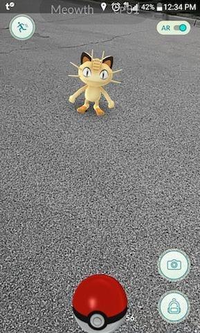 Pokemon_Go_Catch_Meow
