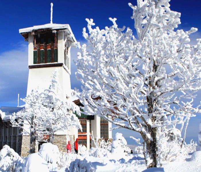 yongpyong-ski-resort-2