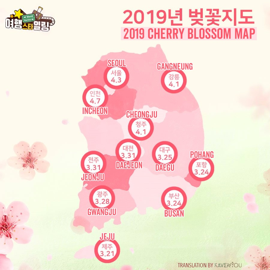 Best Places and Festivals to View Cherry Blossoms in Korea: 2019 Edition