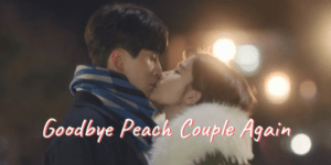 Korean drama Touch Your Heart Lee Dong Wook Yoo In Na Final Episode