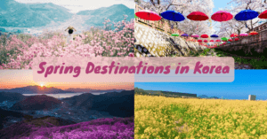 5 spring destinations to visit in Korea